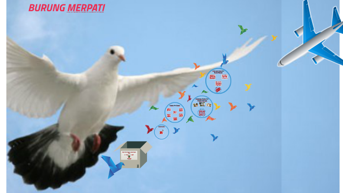 Burung Merpati By Wingki Ariangga On Prezi