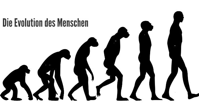 Evolution Des Menschen Film
