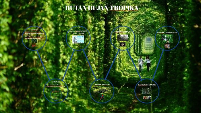 Hutan Hujan Tropika By Shahriman Saidin
