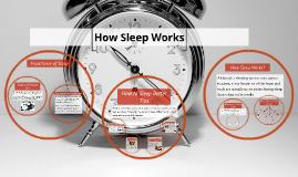 How Sleep Works?