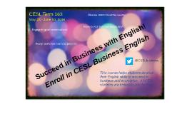 Business English 163