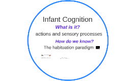 Cognition in the First Two Years