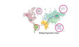 NetApp Organizational Styles