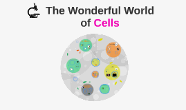 LD The Wonderful World of Cells