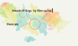 breads of dogs  by Alex rachal