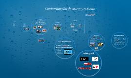Copy of Contaminación de mares y océanos