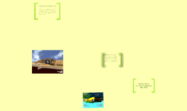Copy of Tectonic Videos