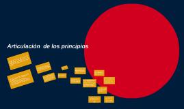 ARTICULACION  DE LOS PRINCIPIOS