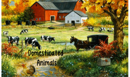 Geo Project Presentation: Domesticated Animals