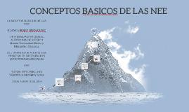 CONCEPTOS BASICOS DE LAS NEE