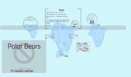 Polar Bears/ Habitation Loss