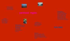 parkland region