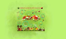 Copy of Alimentacion Saludable en Edad Escolar