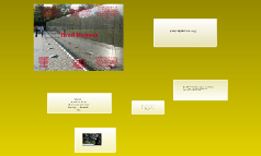 senior english project