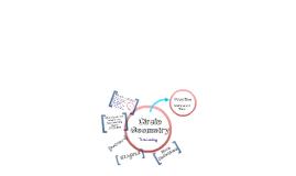 Circle Geometry - Terminology