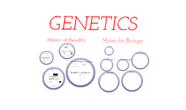 Genetics Unit Introduction