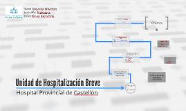 Unidad de Hospitalización Breve