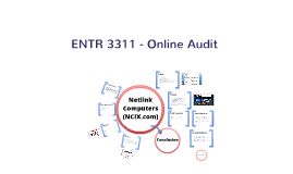 Netlink Computers Inc