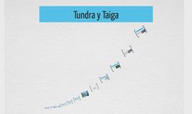 Tundra y Taiga