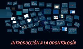 DIVISION DE LAS CARAS AXIALES