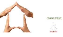 Copy of Camino Seguro