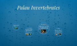 Palau Invertebrates