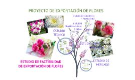 Copy of Proyecto de Exportación de Flores