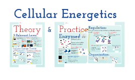 Copy of AP Bio- Metabolism 1:  Cellular Energetics