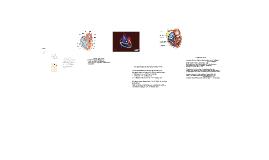 Copy of Herz-Kreislaufsystem und Anpassung an Ausdauertraining