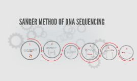 Copy of SANGER METHOD OF DNA SEQUENCING