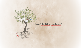 "Copy of Caso ""Radilla Pacheco"""