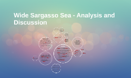 Wide Sargasso Sea - Analysis and Discussion