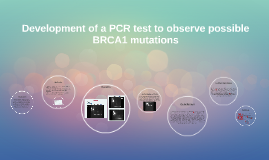 Development of a PCR test to observe possible BRCA1 mutations