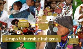 Grupo Vulnerable Indígena