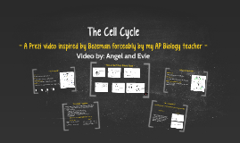 The Cell Cycle: AP Biology Project