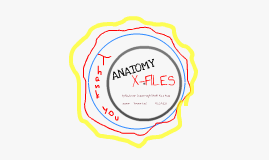 Copy of Anatomy X-files