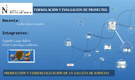 Copy of FORMULACIÓN Y EVALUACIÓN DE PROYECTOS