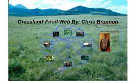 Grassland Food Web
