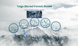 Boreal Forest Biome  AKA Taiga