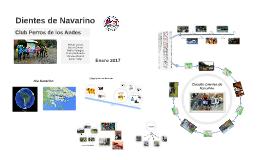 Dientes de Navarino