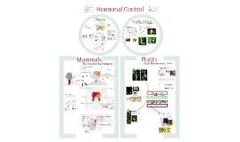 Endocrine System - Hormones