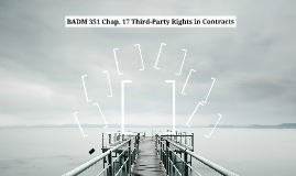 BADM 351 Chap. 16 Third-Party Rights in Contracts