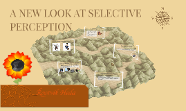 A NEW LOOK AT SELECTIVE PERCEPTION