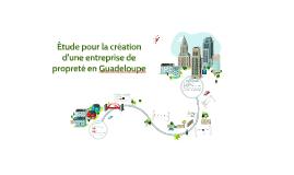Copy of Étude Pour La Création D'une Entreprise De Propreté En Guad