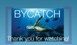 Bycatch 2