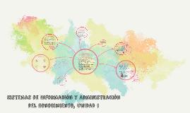 Sistemas de Información y Administración del Conocimiento, Unidad 1