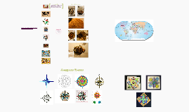 Islamic Art + Compass Rose Project