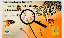 Entomology in Ecuador: Current status and Future challenges