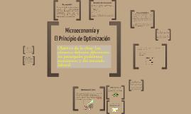 Microeconomia y optimización