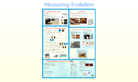 AP Bio- Evolution 3:  Measuring Evolution